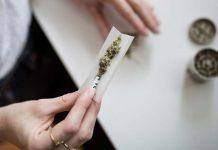 شرکت کانادایی به افرادی که ماریجوآنا مصرف کنند ۱۰۰۰ دلار میدهد
