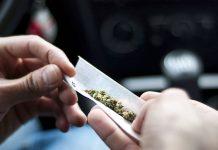 مصرف ماریجوآنا توسط کارکنان پلیس