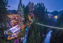 Canyon-Lights-from-above-e1479943242818 (1)