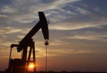 نفت در آلبرتا
