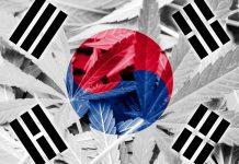 کره جنوبی هم مصرف دارویی ماریجوانا را قانونی میکند
