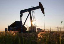نگرانی و ناامیدی سراسر آلبرتا از کاهش قیمت نفت
